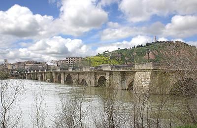 Tudela, la historia de Navarra