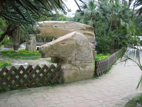 Jard�n Botánico de El Majuelo