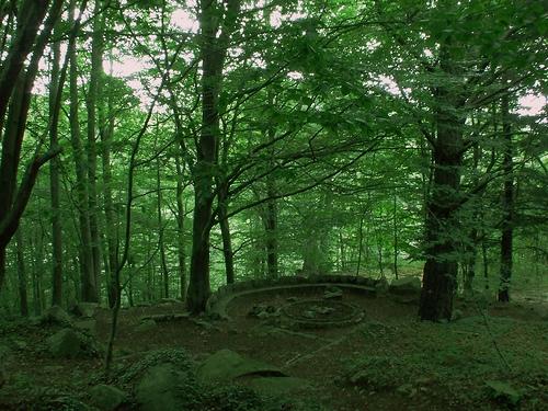 El Parque Natural del Montseny en Gerona