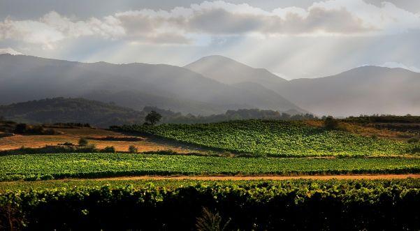 Naturaleza en La Rioja