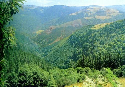 Los Oscos en Asturias