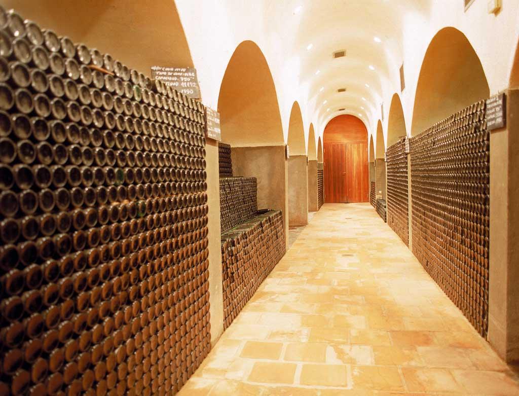 Bodega en la Rioja