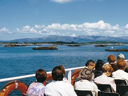 Galicia y el marisco, las bateas de la ría de Vigo