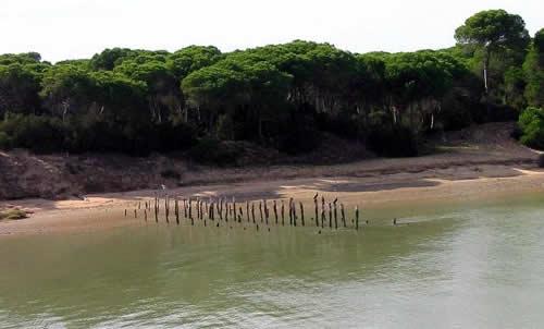 Recorrido histórico por el Parque de Doñana