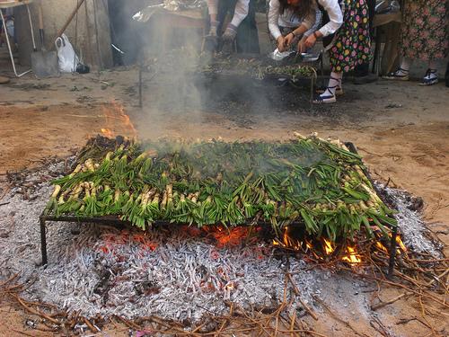 El calçot, fiesta gastronómica en Cataluña