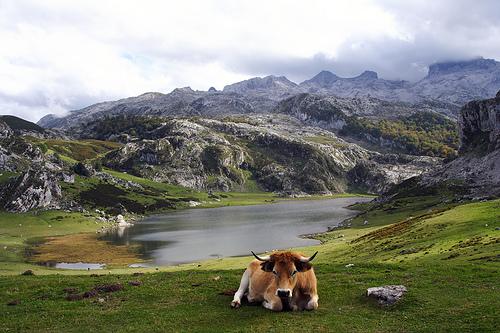 Senderismo en los Lagos de Covadonga en Asturias
