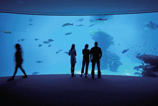 Palma Aquarium en Palma de Mallorca