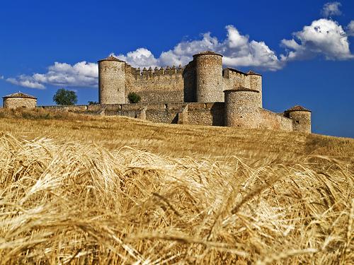 Visita al Castillo de Almenar