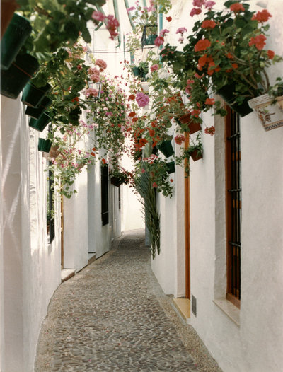 Priego de Córdoba, cuna del barroco cordobés