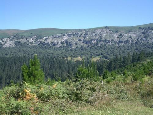 Parque Natural de Armañón en Vizcaya