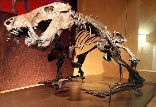 La Costa de los Dinosaurios en Asturias
