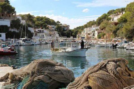 La Llampuga, el delicioso pescado de otoño en Mallorca