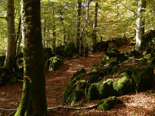 Parque Natural de Urbasa Andía en Navarra