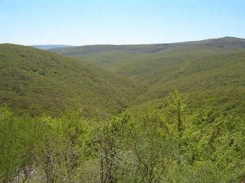 Espacio Natural de Monte Hijedo en Burgos