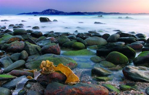 El Parque Natural del Estrecho, entre Tarifa y Algeciras