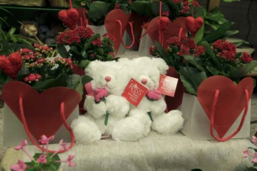 Propuestas para San Valentín en Madrid