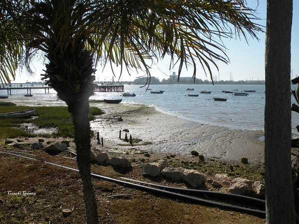 Playa de Palos